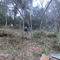 聖ヶ丘野営場の養生