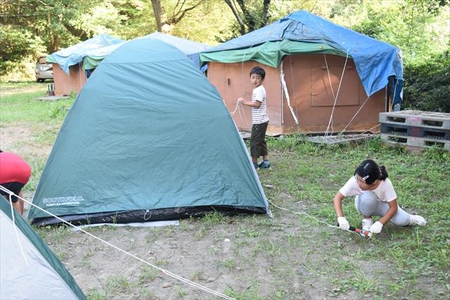 キャンプの森