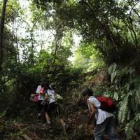 追跡ハイキング